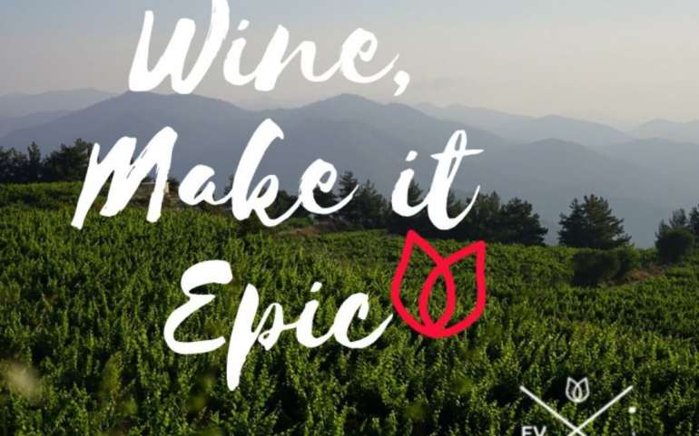 Epic Vineyard moments