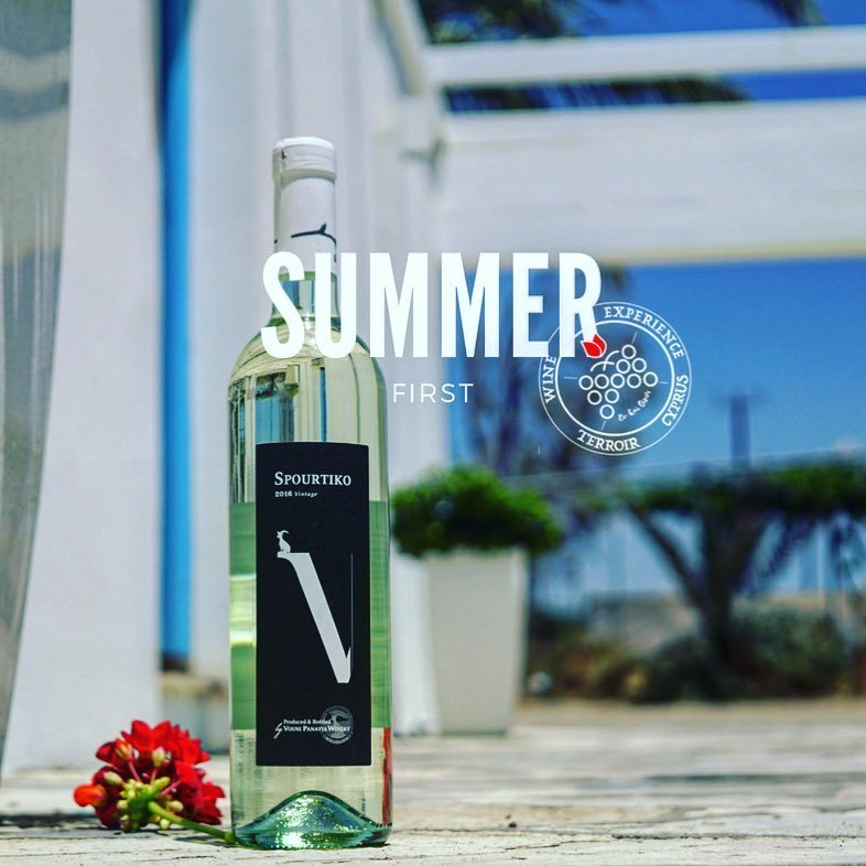 summer true wine cyprus